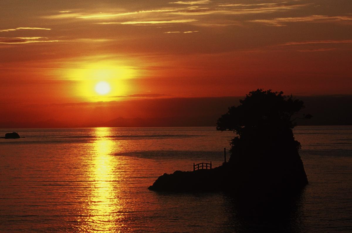 (特選)夕照に彩る港
