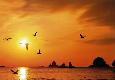 (入選)夕陽に映えて