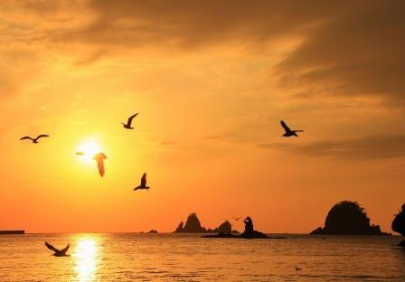 夕陽に映えて(大田子海岸)