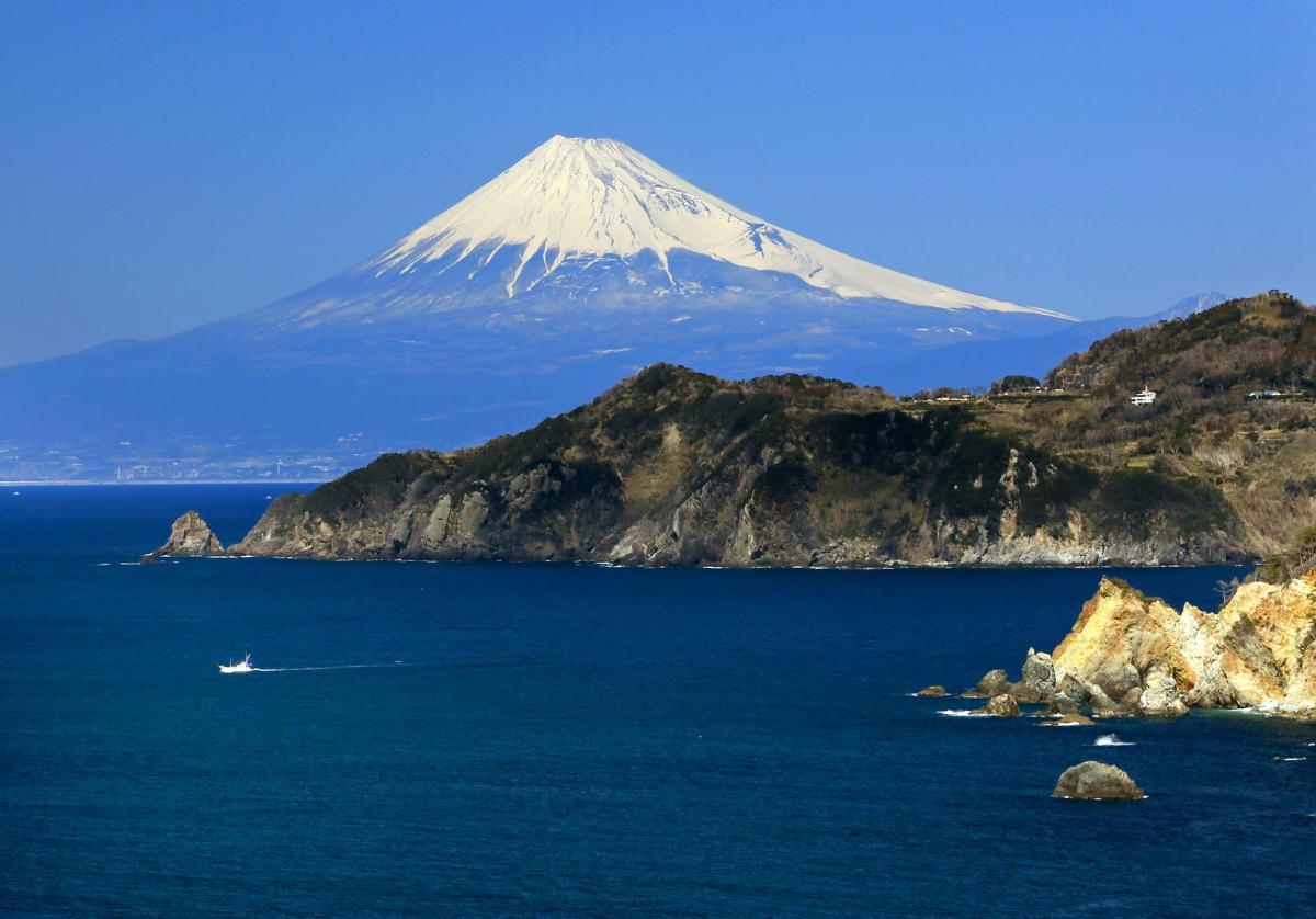 (特選)富士を望む