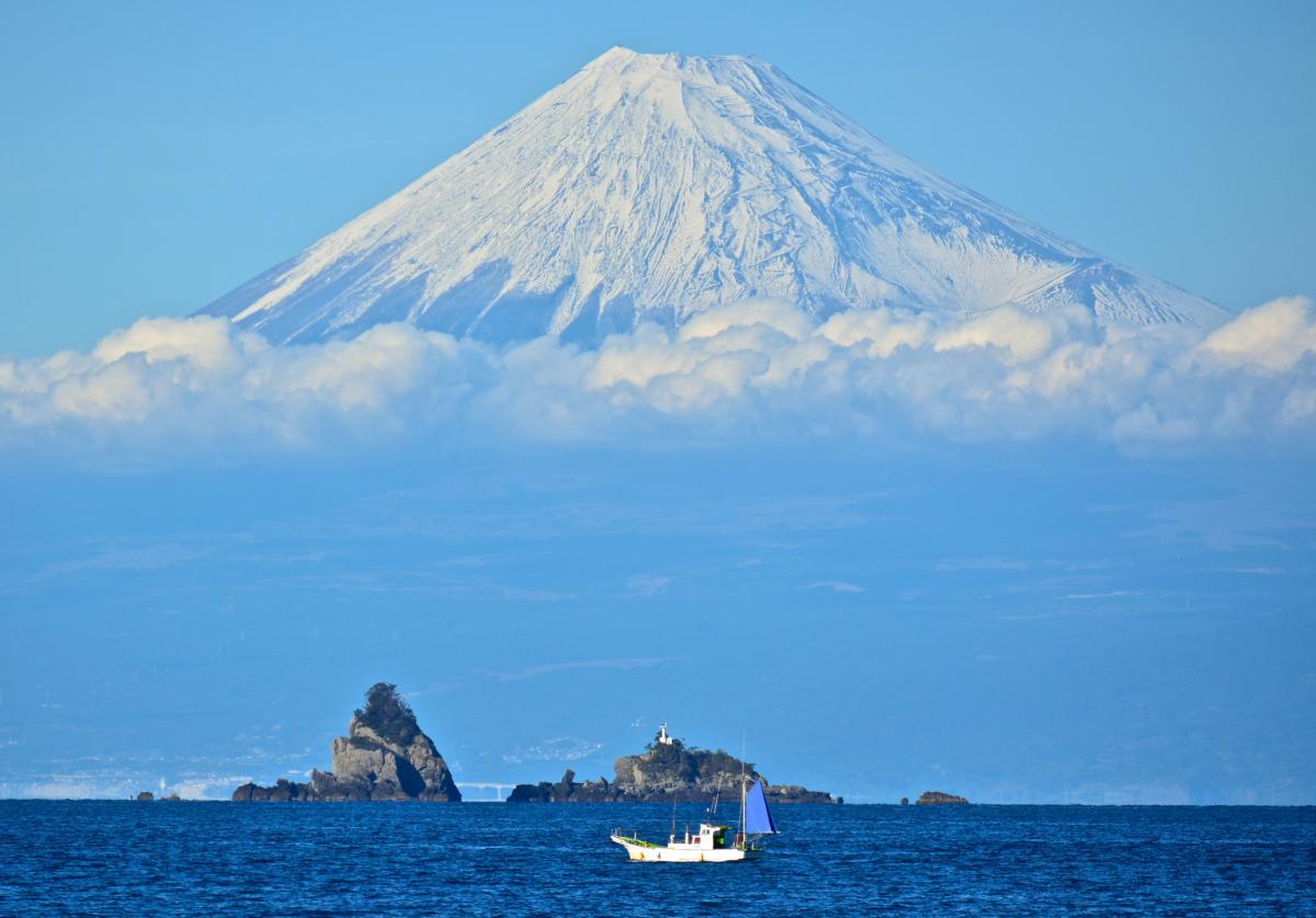(入選)富士見漁