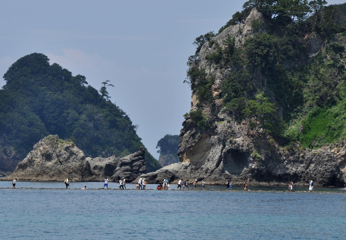 (入選)三四郎島の磯歩き