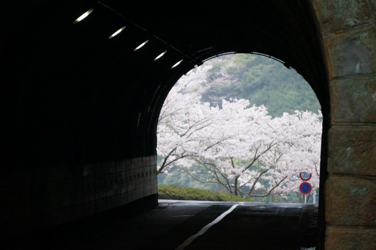 (佳作)宇久須隧道
